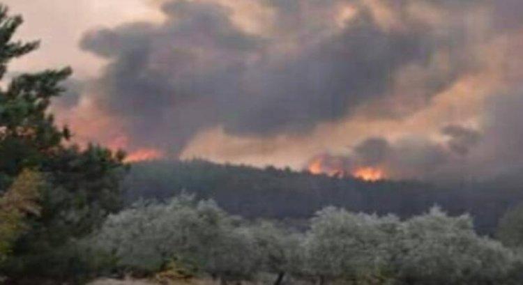 Огънят на Тасос продължава, пострадали са 5 пожарникари