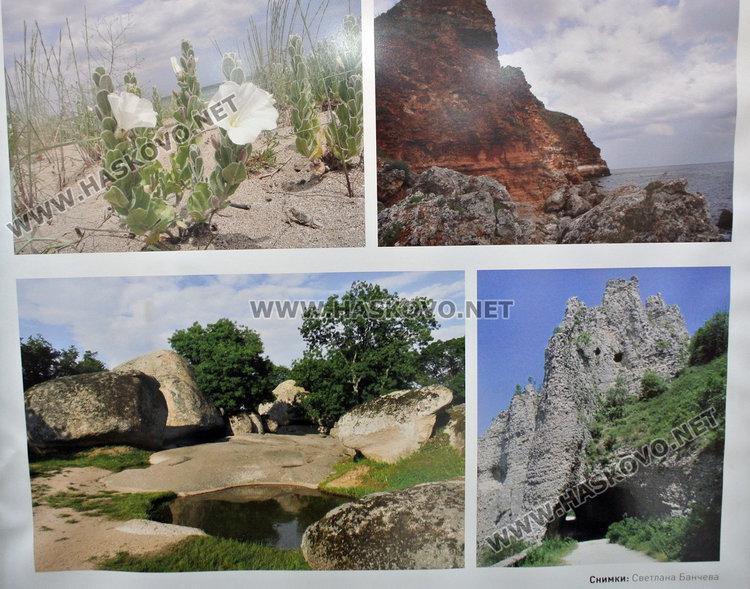 Българската природа е уникална и сравнително добре запазена в Европа, сочи проучване на БАН