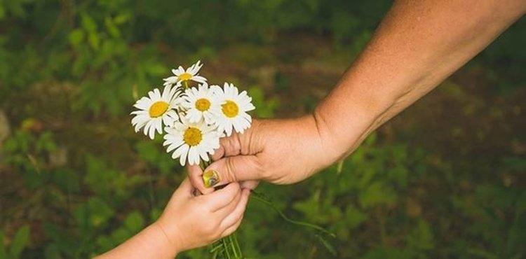 Има ли смисъл добротата от еволюционна гледна точка?