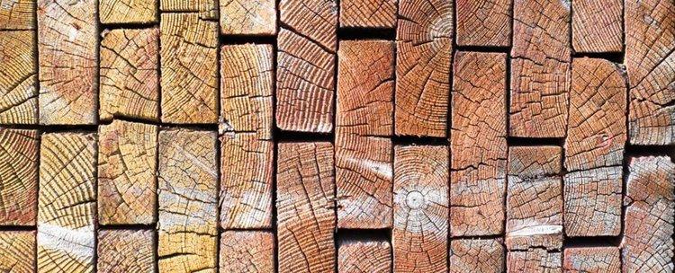 Създадоха дървесина здрава като стоманата