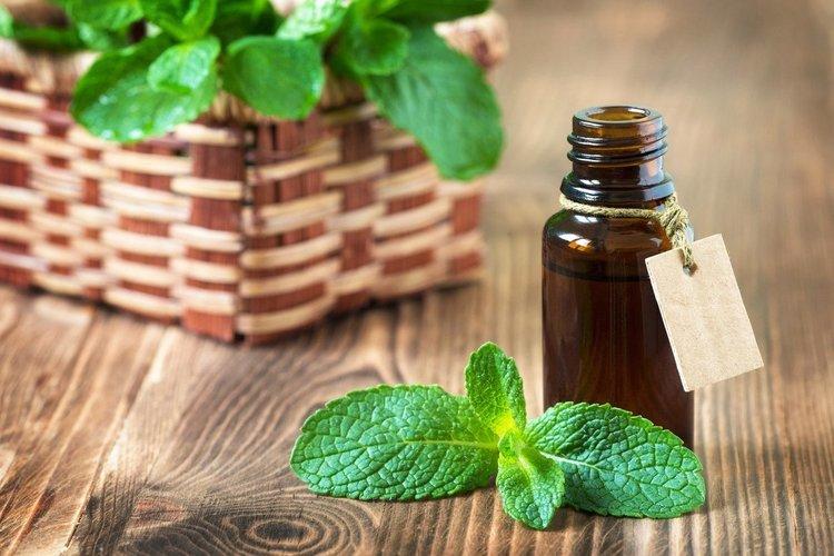35 приложения и ползи от етеричното ментово масло