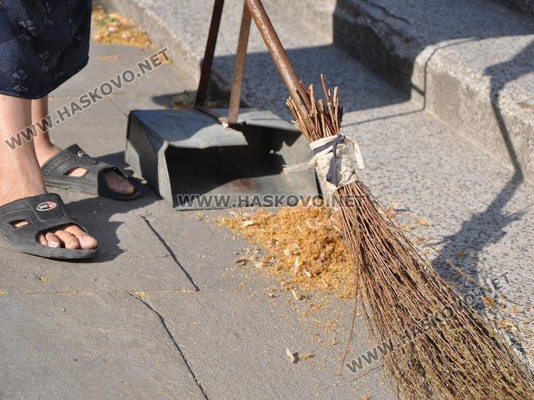 От 50 до 500 лв. глоба за бране на липа в Димитровград