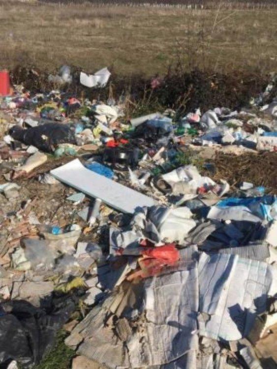 46 хиляди лева от глоби преведе РИОСВ на община Асеновград