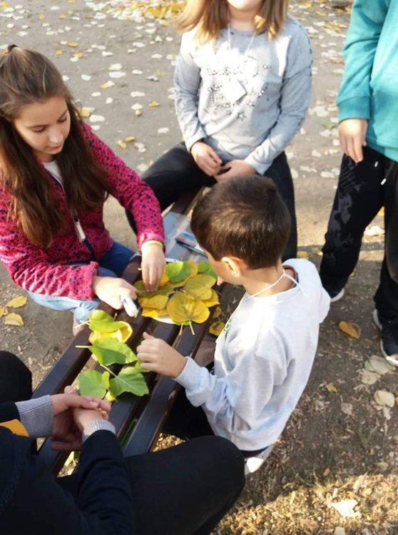 """""""Шарена есен"""" развълнува ученици и учители"""