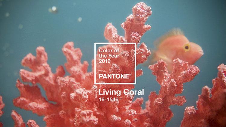 Цветът на 2019 е жизнерадостен, ярък и мек