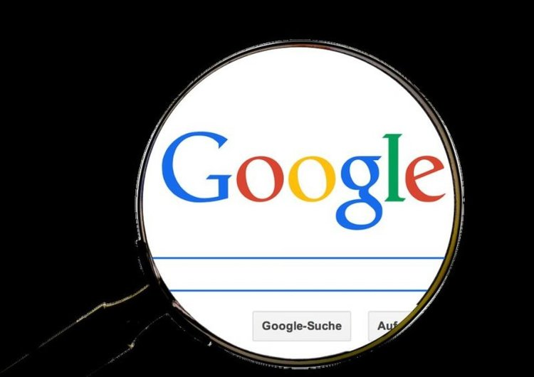 Най-абсурдните търсения в Google за 2018: от 'дезодорант против котки' до 'агенция за дървеници'