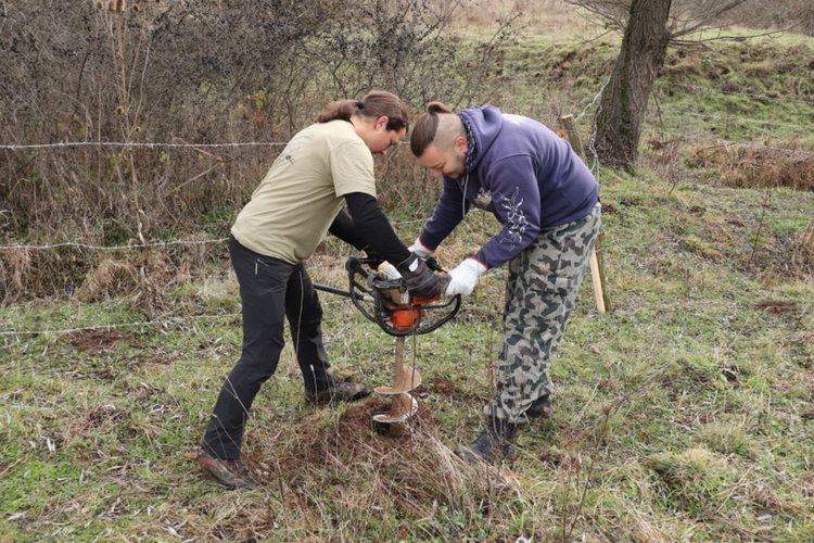 Фиданки и изкуствени гнезда -нов дом за царските орли