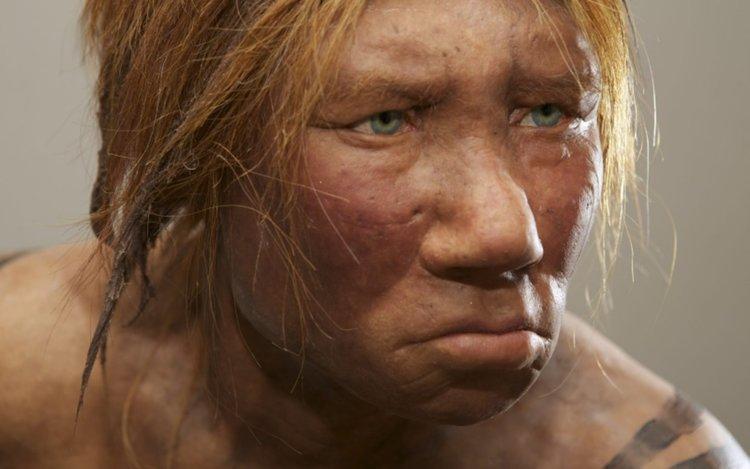 Фрагменти от гените на неандерталци участват в сегашната човешка ДНК