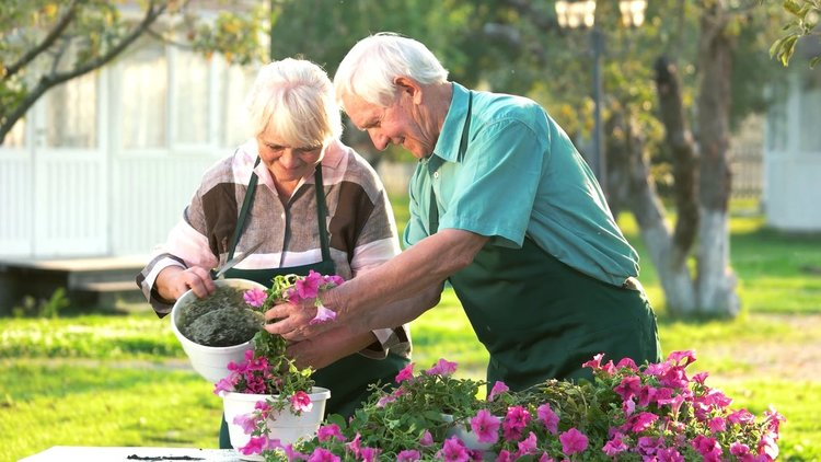 Къде е пенсионният рай? Заплахи за пенсионираните по света