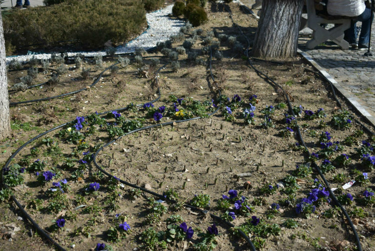 Започват пролетните дейности по градската среда, пръскат за кърлежи към края на март