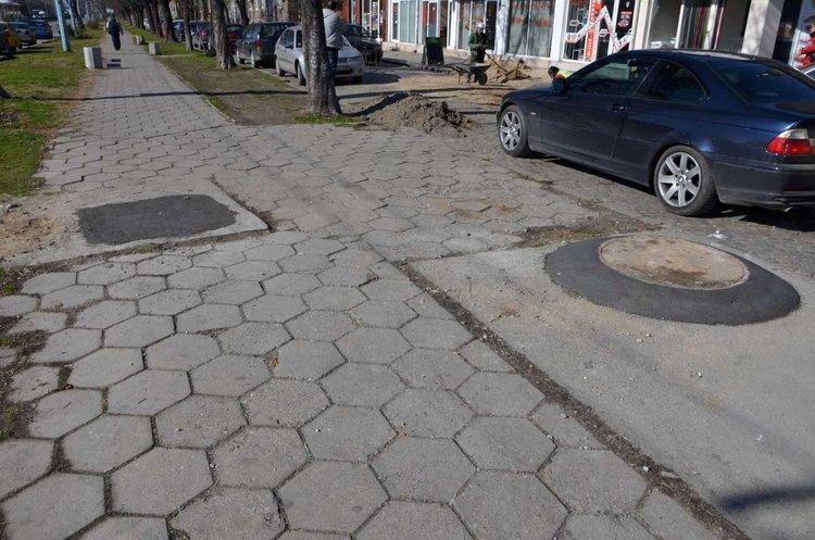 В Пловдив започва обработка срещу гризачи. Общината: Не паркирайте върху шахтите!