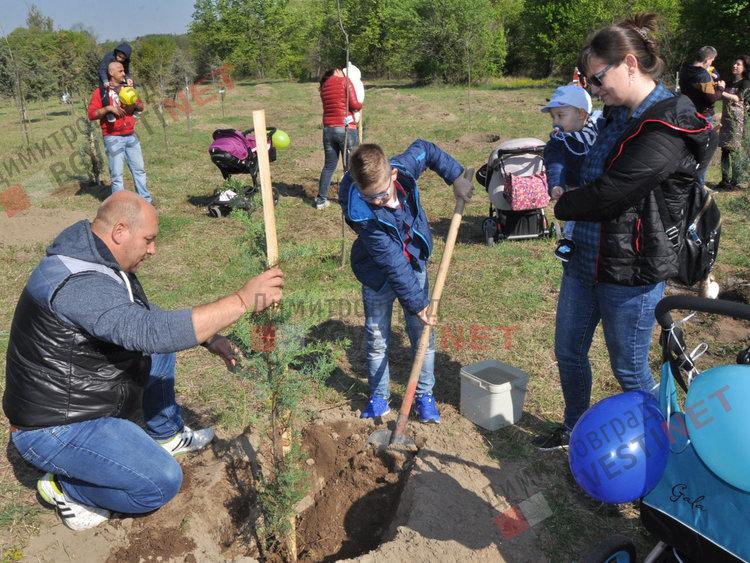 Засадиха 35 нови дръвчета в Алеята на новия живот и раздадоха още 64