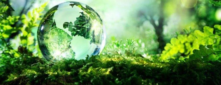 Днес е Денят на Земята