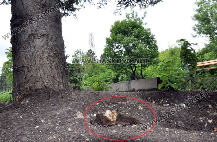 Кучешките площадки в Хасково във фекалии, достъпът проблемен