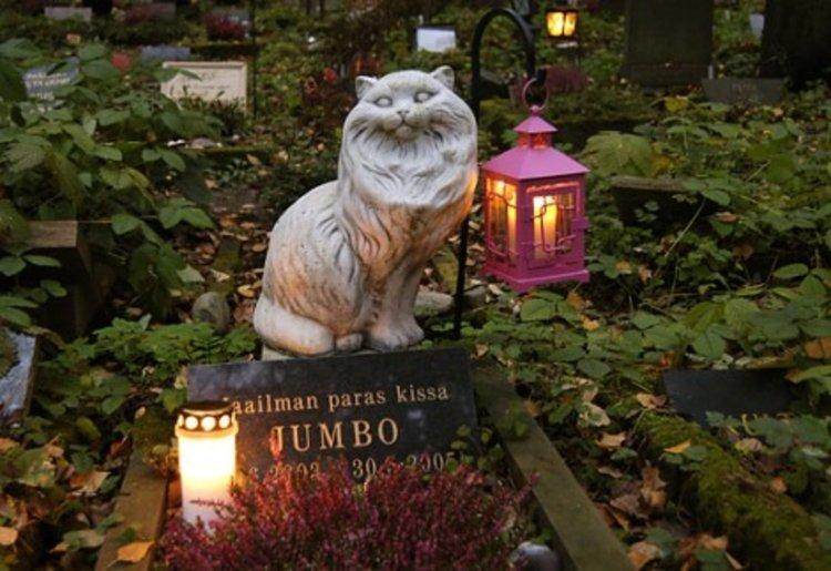 Така може да изглежда един гробищен парк за домашни любимци