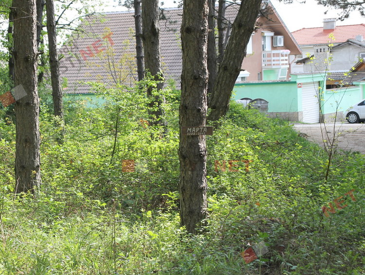 """гробове на животни в парк """"Пеньо Пенев"""" на метри от къщите"""