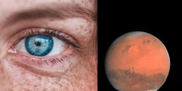 """Само 2-3 поколения и хората на Марс ще се превърнат в """"марсианци"""", смята еволюционен биолог"""