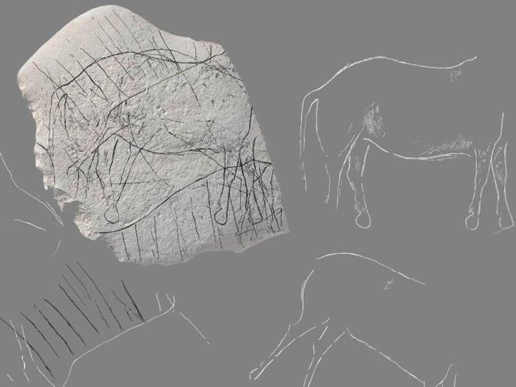 Рисунки от палеолита на кон и зубър откриха във Франция