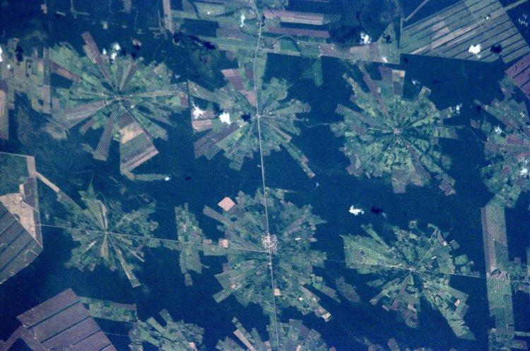 500 000 кв. км гора унищожена за десетилетие от големите хранителни компании