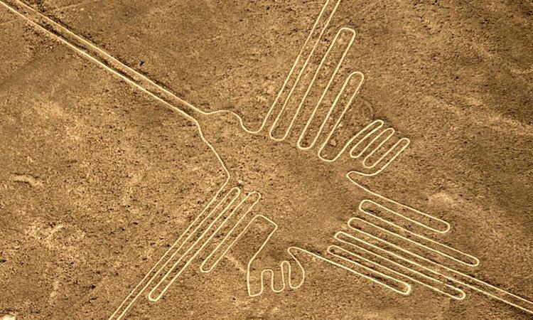Идентифицираха 3 птици от рисунките в Наска, но не са местни