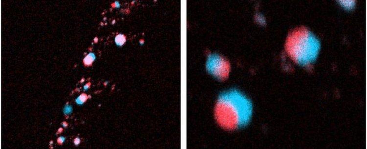 Диамантите в метеорита Алмахата Сита. Сн.: Nabiei et al./Nature Communications