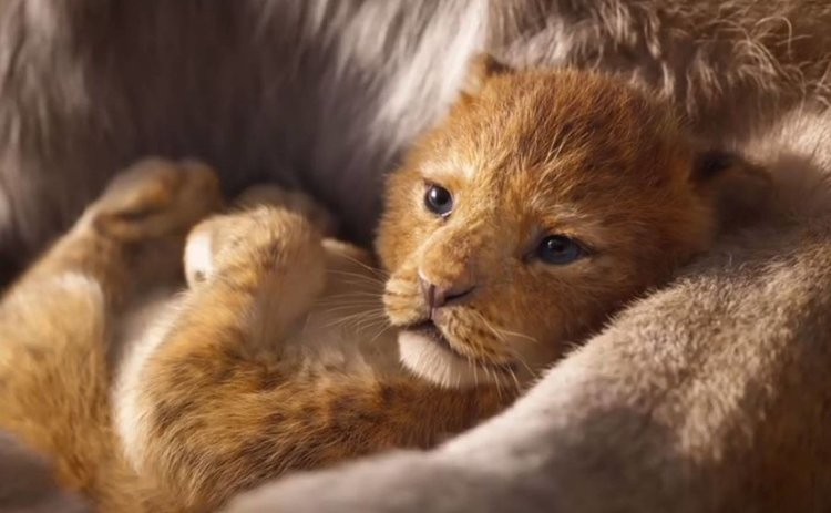 """Дебютното видео от римейка на """"Цар Лъв"""" е зрелищно и нагоре"""
