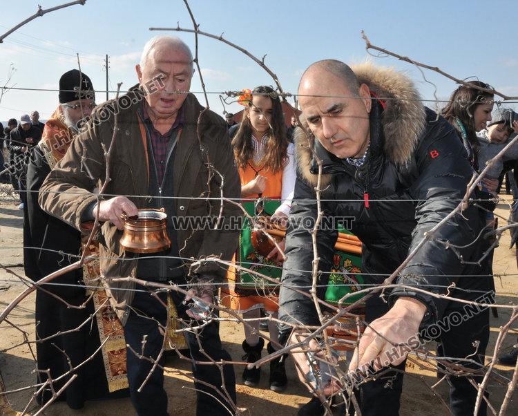 Цветанов и Добрев зарязаха лозята край Харманли, лозарите очакват добра реколта
