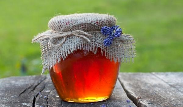 Мед от борови шишарки