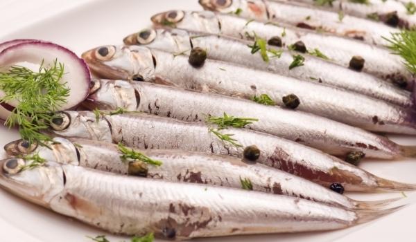 Предястие от дребна риба